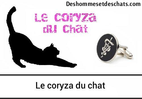 le coryza du chat tout ce que vous devez savoir des hommes et des chats. Black Bedroom Furniture Sets. Home Design Ideas
