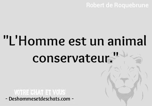 Citations Animaux Les Plus Beaux Proverbes Citation Animaux