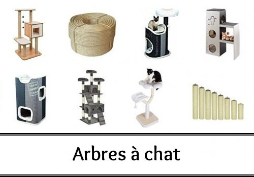 arbres chats des hommes et des chats. Black Bedroom Furniture Sets. Home Design Ideas